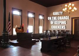 garden city mi man sentenced to jail time on the criminal charge