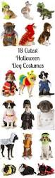 matching dog and owner halloween costumes 339 best halloween costumes and halloween stuff images on
