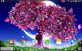cherry blossom live wallpaper android apps on google play