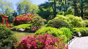 Family Garden Brooklyn The Best Attractions In Brooklyn The New York Pass Blog