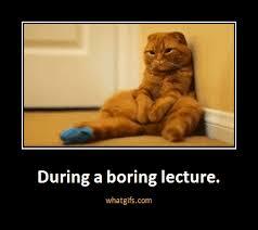 Sleepy Kitty Meme - during a boring lecture memes pinterest memes