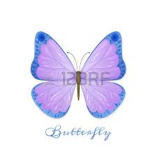 vector illustration of butterfly with violet and blue wings on