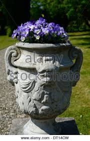 Stone Urn Planter by Stone Urn Planter Filled With Purple Violas Yellow Welsh Poppy