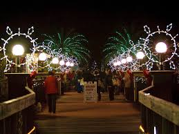 Largo Botanical Garden Botanical Gardens Seeks Volunteers For Lights Largo Fl