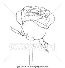vector art beautiful monochrome black and white rose bud with