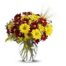 Flower Shops Inverness - same day flower delivery illinois beautiful flowers and fast