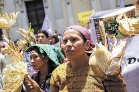 Monsanto Vanity Fair Activists Prompt Guatemala U Turn On Gm Crops U2013 Eye On Latin America