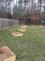 planning my backyard orchard general fruit growing growing fruit