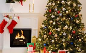 christmas tree prices christmas 2017 in canada christmas tree prices slightly rises