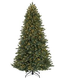 7 colorado blue spruce tree with clear lights tree market