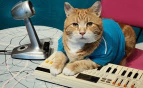 Cat Playing Piano Meme - bento the keyboard cat dies at age 9 condolences pour in the