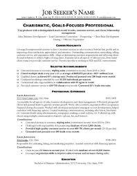 resume for sales hitecauto us