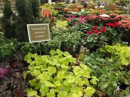 creative winter containers farmington gardens