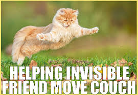 Invisible Cat Meme - invisible cat archives the casino images netthe casino images net