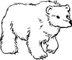 koala bear coloring page bear u2022 gekimoe