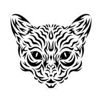 leopard leopards feline felines wildcat wildcats animal animals