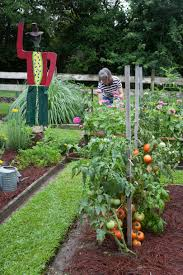 plant vegetable in your back yard southern living