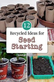 12 seed starting ideas using recycled materials lovely greens