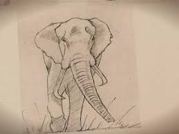 how to draw an elephant youtube