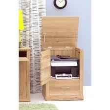 Storage Cabinet Printer Storage Cabinet Best Home Furniture Decoration