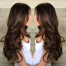 chocolate hair with platinum highlight pictures best 25 caramel brown hair ideas on pinterest caramel hair