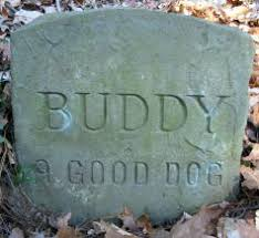 headstones for dogs chester