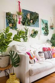 627 best urban jungle images on pinterest plants indoor plants