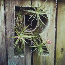 Garden Fence Decor Emejing Fence Decorating Ideas Images Moder Home Design Zeecutt Us