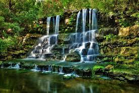Zilker Botanical Garden And Calming Waterfalls Picture Of Zilker Botanical Garden