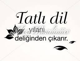 sprüche auf türkisch türkischer wandtattoo spruch nr 3 i wandtattoo de