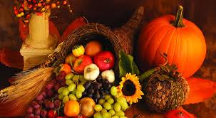 harvest cornucopia happy thanksgiving to our clients friends and colleagues