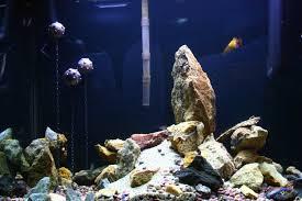 underwater mine tank decorations aquarium forum