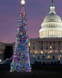 astonishing frasher pre lit christmas tree babadjawa