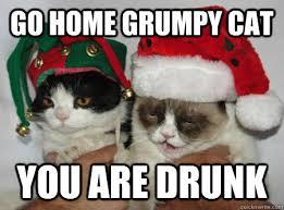 Drunk Cat Meme - go home grumpy cat you are drunk drunk grumpy cat quickmeme