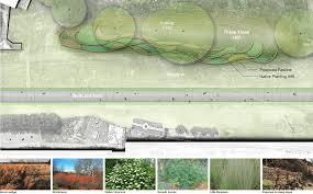 native plantings three tree hill u2022 sylvatica studio