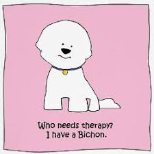 bichon frise cartoon who needs therapy i have a bichon i think therapy may be