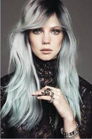 looking with grey hair 14 best skunk images on pinterest grey hair braids and going gray