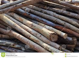 pile of wood sticks stock image image of barn construction