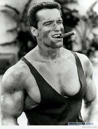Arnold Meme - create meme not for that not for that arnold schwarzenegger