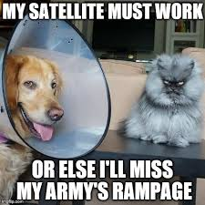 Colonel Meow Memes - my satellite must work imgflip