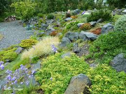 Rock Gardens On Slopes Wasilla Alaska Rock Garden