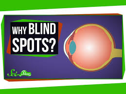 Finding Your Blind Spot In Your Eye Why Do We Have Blind Spots Youtube