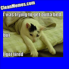 Too Tired Meme - too tired clean memes