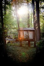 Treehouse Community by 64 Best Tree Houses Images On Pinterest Architecture Live And