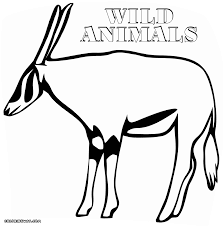 wild animals coloring pages coloring pages to download and print