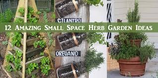Small Herb Garden Ideas 12 Amazing Small Space Herb Garden Ideas Diy Scoop