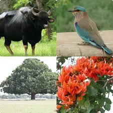 telangana state images logos of animal bird tree and flower