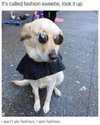 Fashion Meme - it s called fashion sweetie look it up it s called fashion look