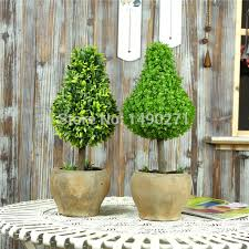 prompt delivery tree for cheap artificial grass best sale