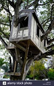 tree house stock photos u0026 tree house stock images alamy